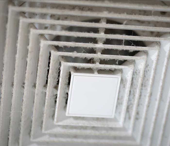 mold growth in vent system