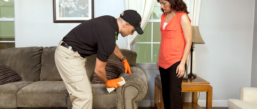 La Habra, CA carpet upholstery cleaning